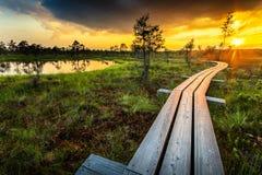 Tramonto nel parco nazionale di Kemeri immagine stock libera da diritti