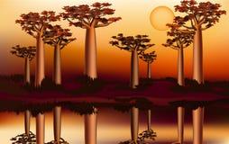 Tramonto nella foresta africana del baobab vicino al fiume 5 Fotografia Stock Libera da Diritti