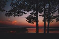 Tramonto nella foresta con il lago e gli alberi fotografia stock
