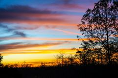 tramonto nella palude della Luisiana Immagine Stock Libera da Diritti