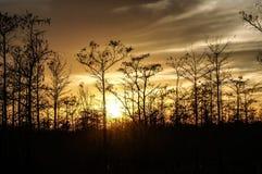 tramonto nella palude della Luisiana Fotografie Stock