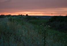 Tramonto nella steppa di Rostov Immagine Stock