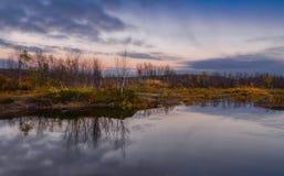 Tramonto nella tundra di autunno Paesaggio di autunno dietro il Circolo polare artico fotografia stock libera da diritti