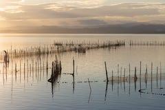 Tramonto nelle acque calme nel parco naturale di Albufera, Valencia, Spagna Colori magici nello sfondo naturale fotografia stock libera da diritti