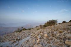 Tramonto nelle montagne dell'Oman Fotografia Stock