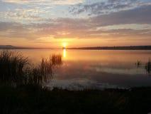 Tramonto o alba sul lago ad estate Fotografia Stock Libera da Diritti