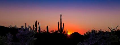 Tramonto panoramico del deserto Fotografia Stock Libera da Diritti
