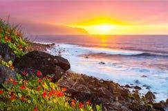 Tramonto rosa con i fiori e l'oceano sulla costa del nord di pazzo fotografie stock libere da diritti