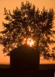 Tramonto Saskatchewan Canada Fotografie Stock Libere da Diritti