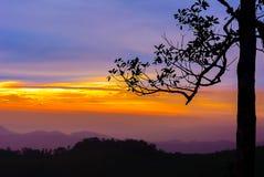 Tramonto scenico nelle montagne con gli alberi nella priorità alta Fotografie Stock