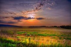 Tramonto sopra il campo di agricoltura alla sera di estate, luce solare, cielo, erba Atmosfera di distensione Immagini Stock