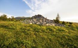Tramonto sopra il campo verde Fotografia Stock