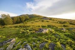 Tramonto sopra il campo verde Fotografia Stock Libera da Diritti