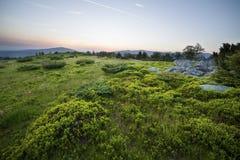 Tramonto sopra il campo verde Fotografie Stock Libere da Diritti