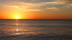 Tramonto sopra il golfo in Florida stock footage