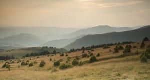 Tramonto sopra il pascolo della montagna di Golija in Serbia Immagini Stock