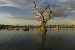 Tramonto sopra il ponte del tek Fotografia Stock Libera da Diritti