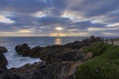 Tramonto sopra l'oceano davanti alla scogliera coperta di fiori di inverno immagini stock libere da diritti