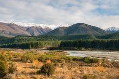 Tramonto sopra la foresta del pino in alpi del sud, Nuova Zelanda Fotografia Stock