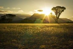Tramonto sopra le montagne ed i campi australiani Immagini Stock