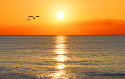 Tramonto sopra un oceano Fotografia Stock