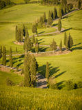 Tramonto sopra un vicolo del cipresso di bobina in Toscana immagini stock