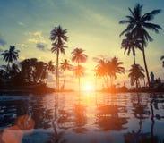 Tramonto stupefacente sulla spiaggia del mare con la palma nave Fotografia Stock Libera da Diritti