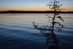 Tramonto su un lago Immagine Stock