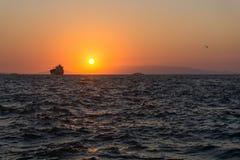 Tramonto su un oceano con una nave e un gabbiano su un orizzonte Fotografia Stock