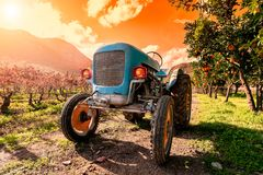 Tramonto su un vecchio trattore blu-chiaro per i raccolti agricoli Immagine Stock