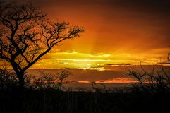 Tramonto in Sudafrica fotografie stock libere da diritti