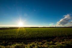 Tramonto sui campi verdi Fotografia Stock Libera da Diritti
