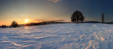 Tramonto sul campo congelato. Immagini Stock