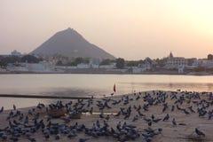 Tramonto sul lago 3 Pushkar Fotografia Stock Libera da Diritti