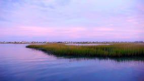 Tramonto sull'acqua con l'erba della palude nella priorità alta Fotografia Stock