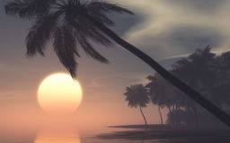 Tramonto sull'isola tropicale Immagini Stock