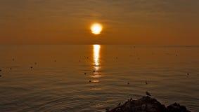 Tramonto sulla baia di Trieste Fotografia Stock Libera da Diritti