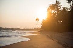 Tramonto sulla bella spiaggia tropicale Immagini Stock