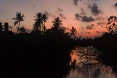 Tramonto sulla siluetta del fiume degli alberi e della riflessione della palma Fotografia Stock