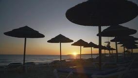 Tramonto sulla spiaggia con le siluette degli ombrelli della paglia contro il cielo stock footage