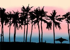 Tramonto sulla spiaggia del golfo persico Immagine Stock Libera da Diritti