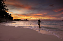Tramonto sulla spiaggia, isola di Similan, Tailandia Fotografia Stock Libera da Diritti