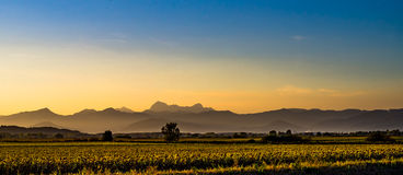 Tramonto in Toscana Fotografia Stock