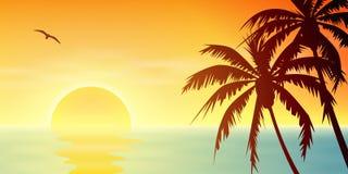 Tramonto tropicale illustrazione di stock