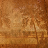 Tramonto tropicale Fotografie Stock