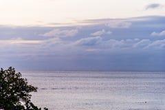 Tramonto tropicale sopra l'oceano Fotografia Stock Libera da Diritti