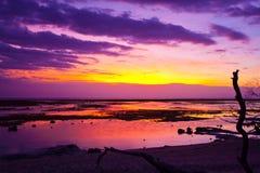 Tramonto tropicale sulla spiaggia Fotografie Stock Libere da Diritti