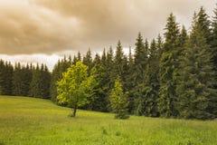 Tramonto in una bella valle Fotografia Stock Libera da Diritti