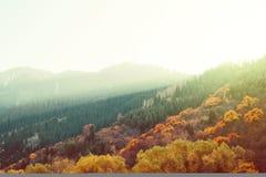 Tramonto variopinto dei pendii di montagna della foresta di autunno Immagine Stock