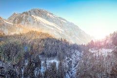 Tramonto variopinto nelle montagne e nel terreno boscoso nevosi di inverno Hintersteiner Tal, Allgau, Baviera, Germania Immagini Stock Libere da Diritti